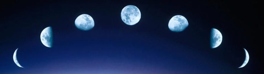 Jeux du portefeuille ou voeux de la pleine lune