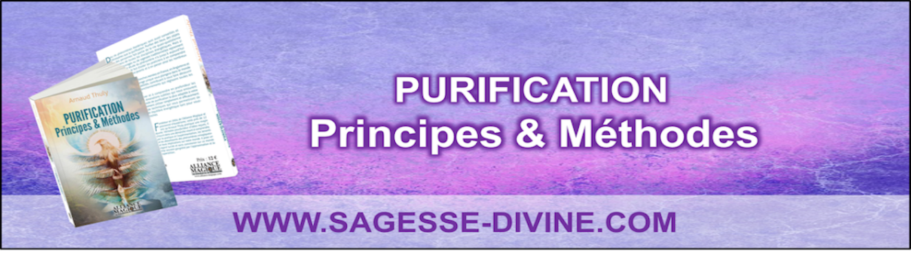 Purification : principes et methodes - Arnaud THULY - Livre